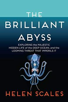 The Brilliant Abyss jacket