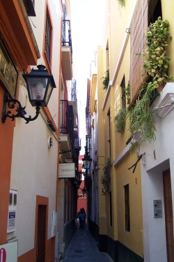Seville has many narrow, winding streets