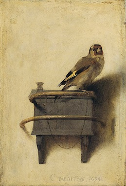 Carel Fabritius' The Goldfinch