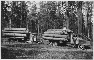 Logging in Washington state