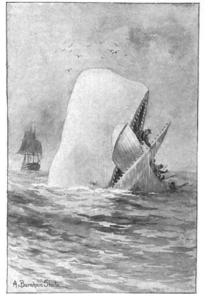 Illustration from Moby Dick