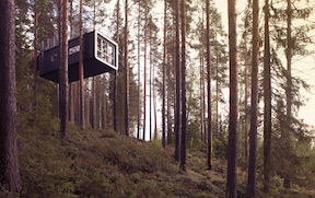 The Treehotel