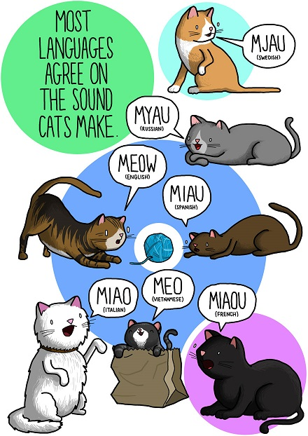 Illustration of cat sounds from languages around the world