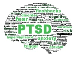Words Associated with PTSD in Brain-Shaped Design