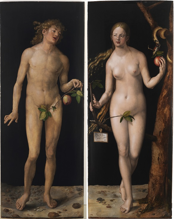 Side by side paintings of nude Adam and Eve holding apples by Albrecht Durer