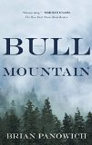 Book Jacket: Bull Mountain