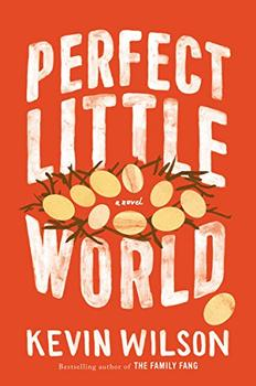 Book Jacket: Perfect Little World