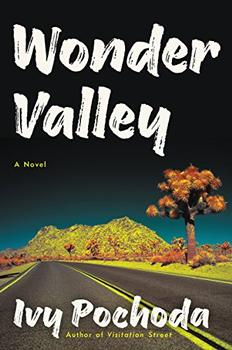 Wonder Valley by Ivy Pochoda
