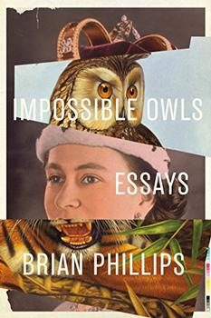 Impossible Owls by Brian Phillips