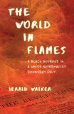 The World in Flames jacket