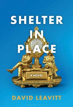 Shelter in Place book jacket